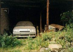 BX GTi 16V Rauschenberg