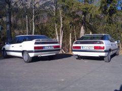 Zwei weiße Schönlinge