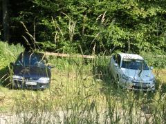 ACC Jahrestreffen 2 Citroen Foto durch Büsche