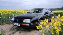 CX Prestige Turbo - schwarz und gelb