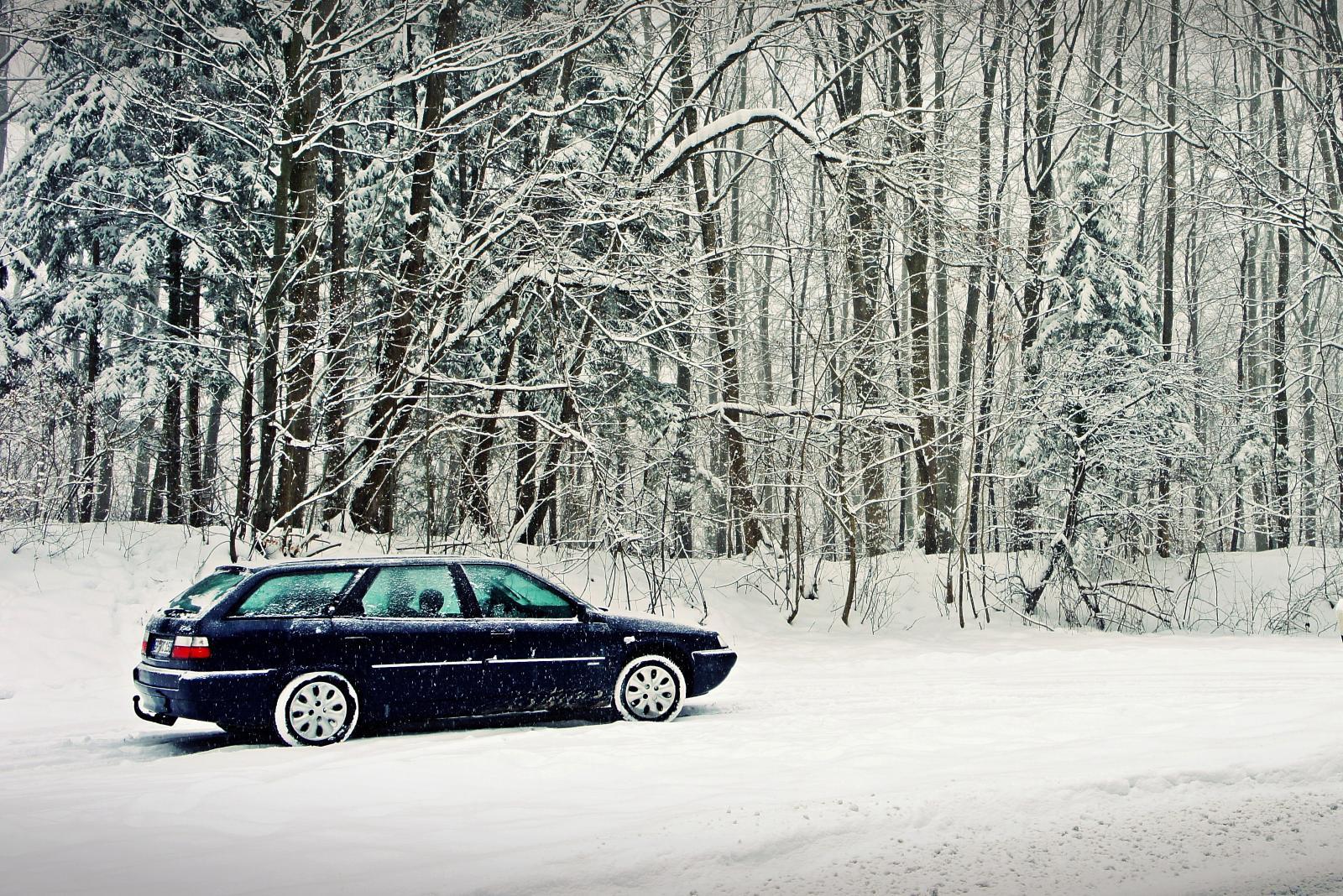 Winter-Xantia