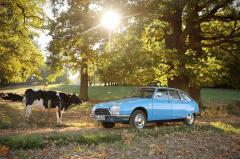 GS 1220 1977 mit Kuh