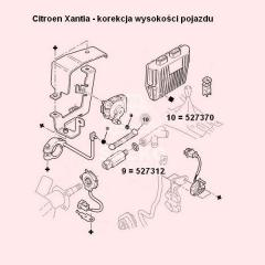 ciegno-korektora-przeswitu-citroen-c5-xantia-65mm-oryginal-citroen.jpg